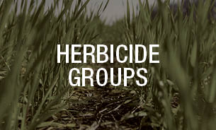 Bayer Crop Science Herbicides Products.