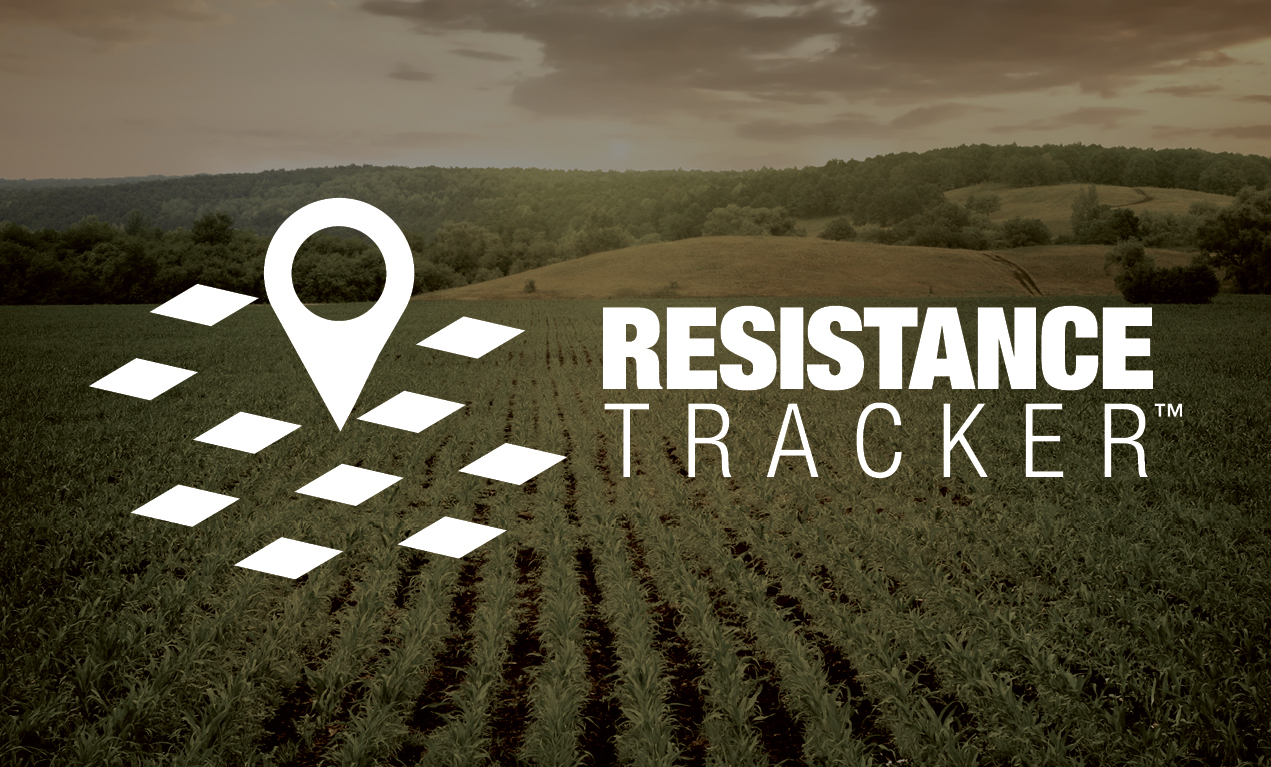 Use Resistance Tracker tool to know more on local weeds.