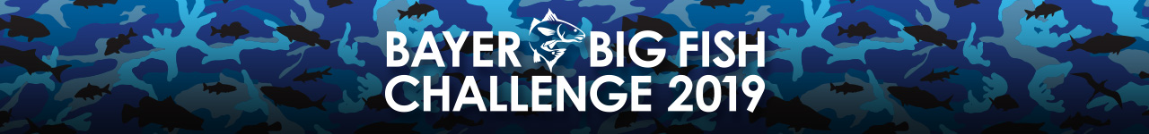 Bayer Big fish Challenge header