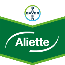 Search Bayer's fungicide products