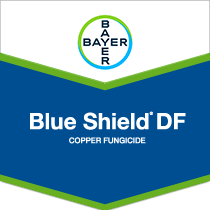 Blue Shield brandtag