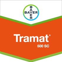 Tramat® 500 SC Selective Herbicide by Bayer