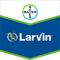 Bayer Larvin® 375 Insecticide