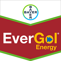 EverGol® Energy Seed Treatment by Bayer Crop Science