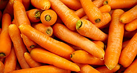 Serenade Prime Crop user guides for Carrots by Bayer