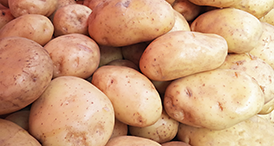 Serenade Prime Crop results for Potato crop by Bayer