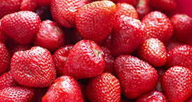 Serenade Prime Crop results for Strawberries by Bayer