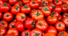 Serenade Prime Crop results for Tomato crop by Bayer