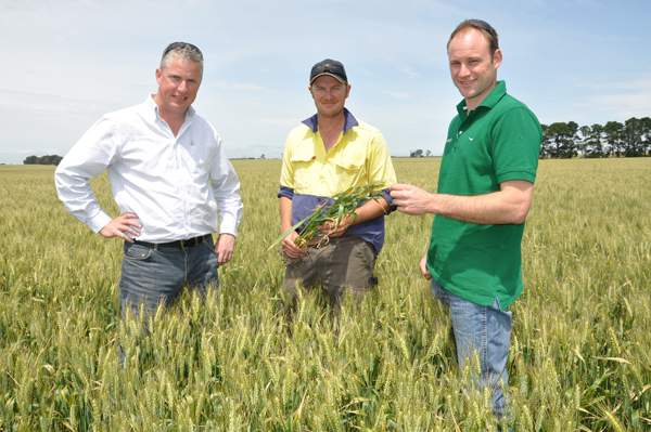Hamilton family's cropping operations at Inverleigh